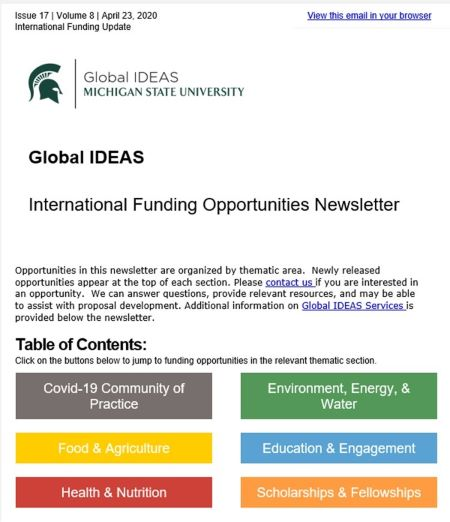Global IDEAS Newsletter heading for website 2.jpg